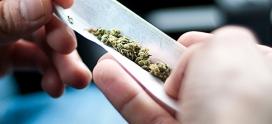 Steve Alcoholic – Suicide By Alcohol: Steve Used Marijuana As A Gateway Drug To Alcohol